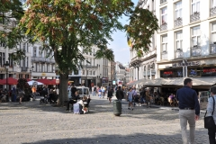 Wandeling door centrum Brussel